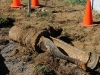 Water Main Break 32 & Q: Tree root was determined to be the cause