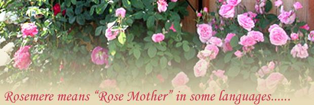 rosescropfade3-copy1